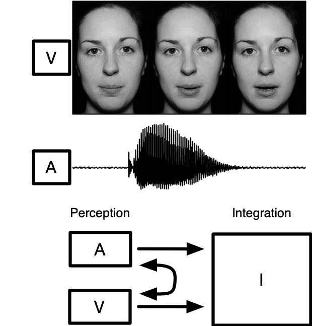 AV_integration