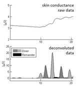 Skin conductance graph